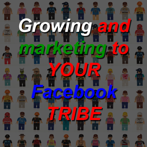 Click here for more details on, How to create and Profit Your FB TRIBE