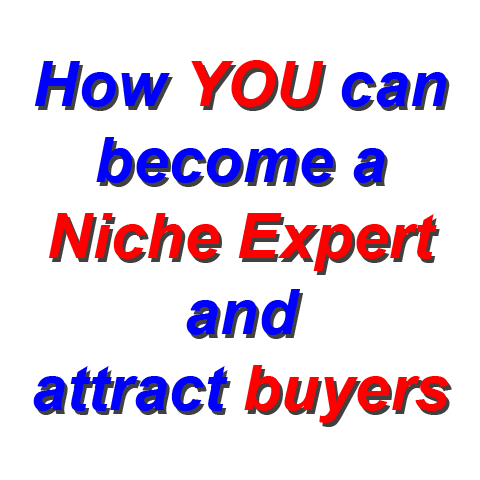 Click here for more details on, How YOU can become a Niche Expert